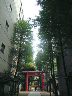 花園神社の参道
