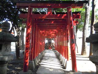 花園神社の連続鳥居