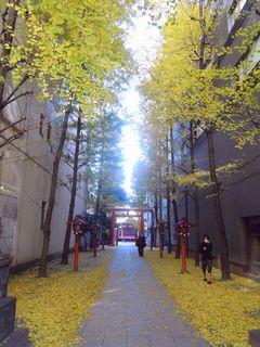 花園神社の境内